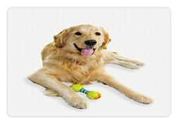 Ambesonne Golden Retriever Pet Mat for Food and Water, Pet D