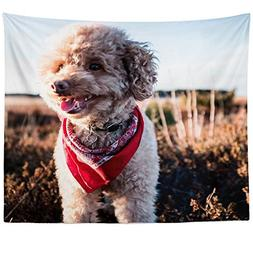 Westlake Art - Dog Poodle - Wall Hanging Tapestry - Picture
