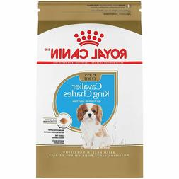 ROYAL CANIN BREED HEALTH NUTRITION Chihuahua Adult dry dog f