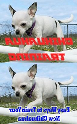 Chihuahua Training, Easy Ways to Train Your New Chihuahua: T