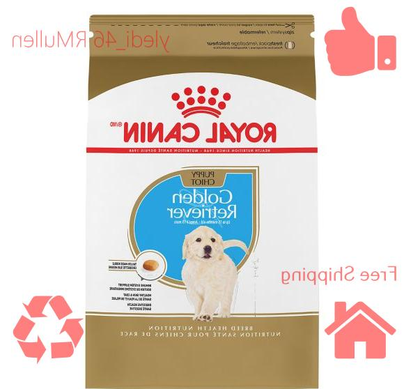 breed health nutrition golden retriever puppy food
