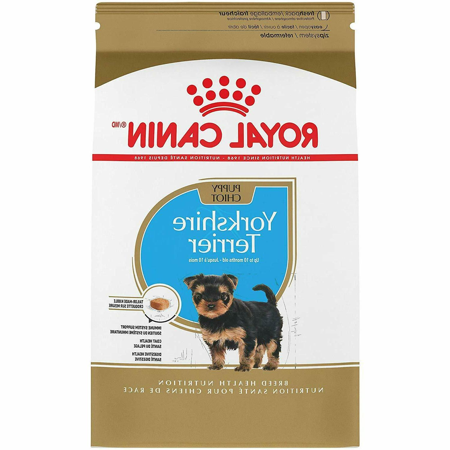 breed health nutrition yorkshire terrier puppy dry