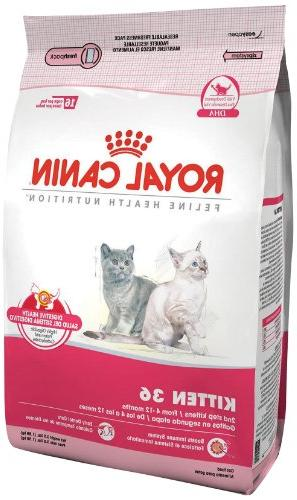 Royal Canin Feline Health Nutrition Dry Food For Young Kitte