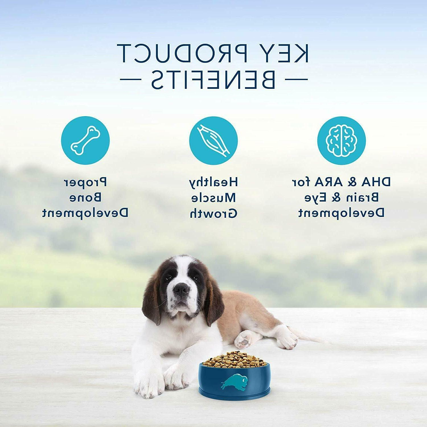 Blue Large Breed Dog Food Brand New