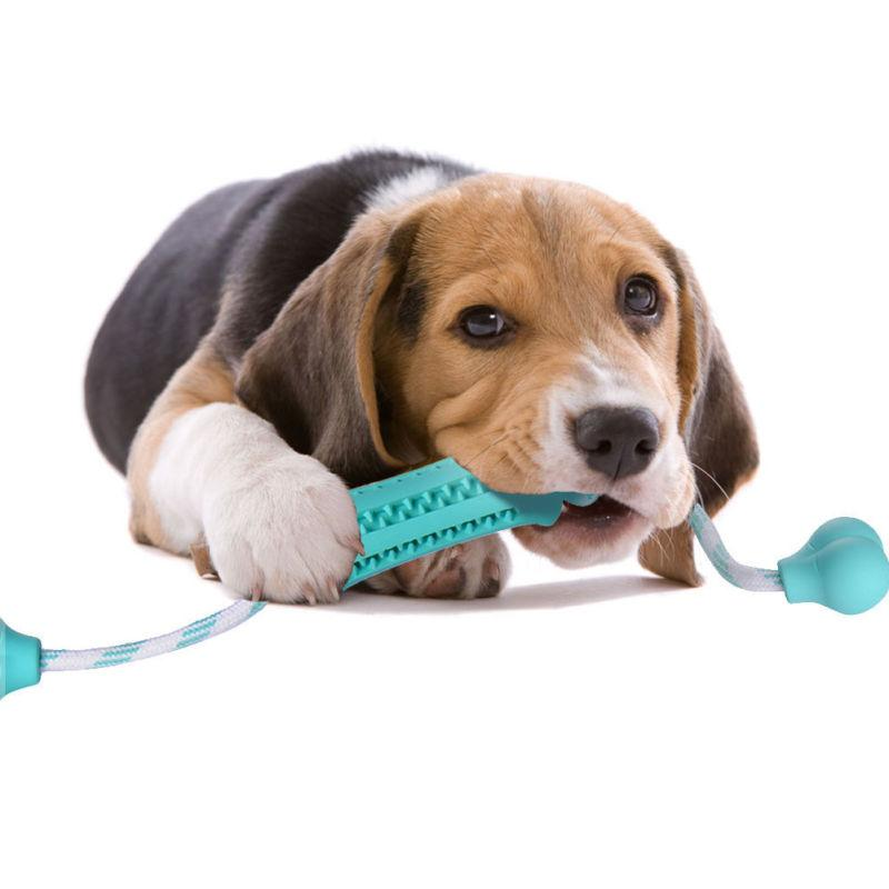 Pet Puppy Rubber Dental Bone Food Feeder Play