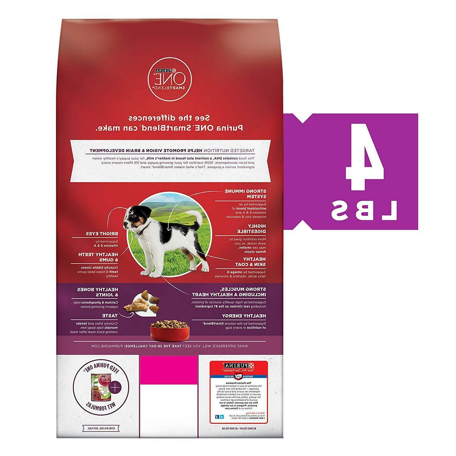 Purina ONE Natural Healthy Puppy Dry Dog