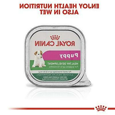 : Royal Health Nutrition Small Mother Dry Dog