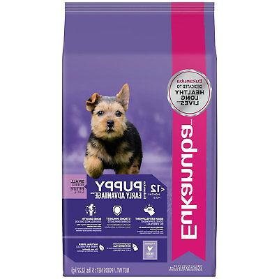 small breed puppy food