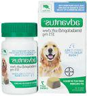 Advantus Soft Chew Oral Flea for Dogs  37.5mg Imidacloprid