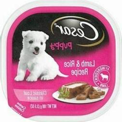 Cesar Puppy Wet Dog Food Classic Loaf In Sauce Lamb & Rice R