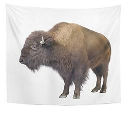 Emvency Tapestry Buffalo Bison in Front of White American An