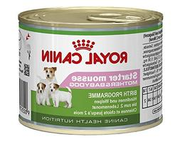 Royal Canin Wet Starter Mousse for dog puppies, 3 cans